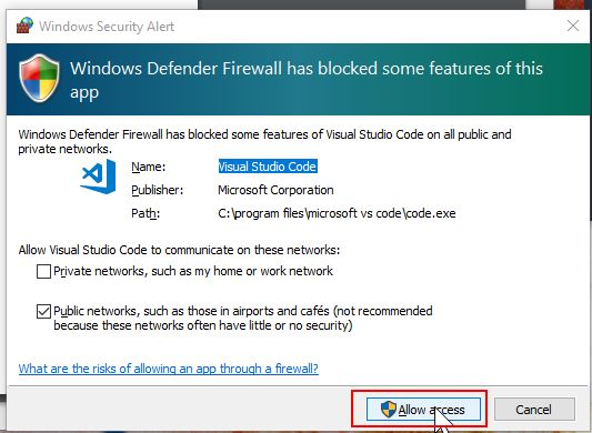 accept firewall rule first time you run the program